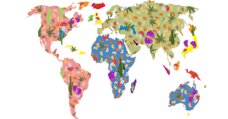 World of Cannabis
